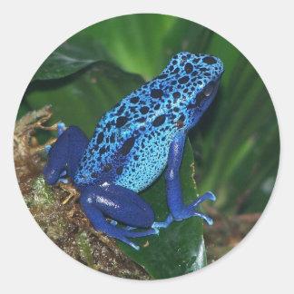 Het blauwe Portret van de Kikker van de Pijl van Ronde Stickers