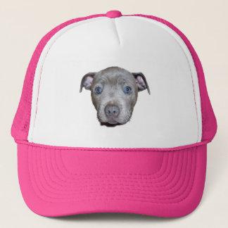 Het blauwe Staffordshire Bull terrier Gezicht van Trucker Pet