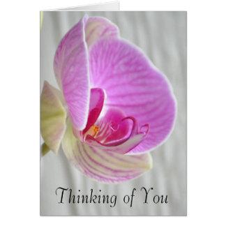 Het Bloemen Denken van de orchidee aan u Kaart