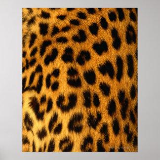 Het Bont van Jaguar Poster