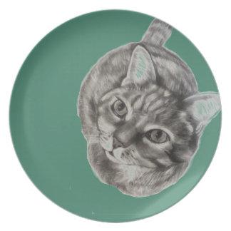 Het Bord die van de Kat van de gestreepte kat