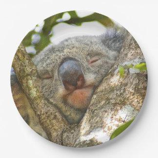 Het Bord van het Document van de koala