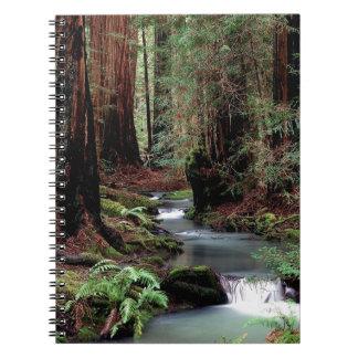 Het Bos Californië van Montgomery van de boom Ringband Notitieboek