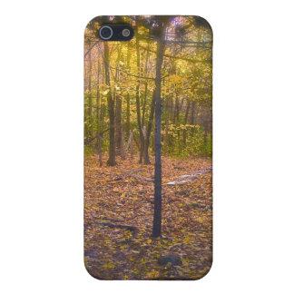 Het bos Gebladerte van Vermont van de Sleep iPhone 5 Cover