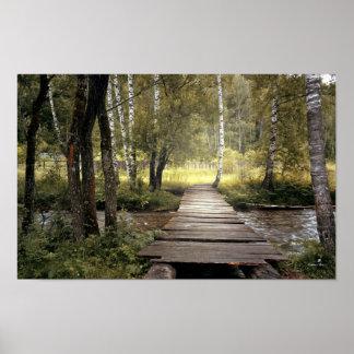 Het bos Poster van de Kreek van de Brug