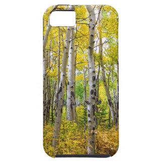 Het Bos van Colorado Backcountry Tough iPhone 5 Hoesje