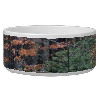Het Bos van de herfst Voerbakje