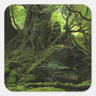 Het Bos van het oerwoud van Mos Vierkante Sticker
