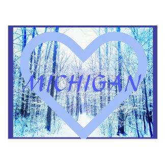 Het Bosbriefkaart van de Winter van Michigan Briefkaart