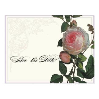 Het botanische Roze nam, Sering sparen het Briefkaart