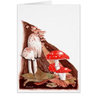 Het botanische Schilderen: De Giftige paddestoelen Briefkaarten 0