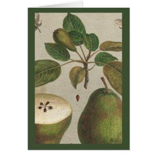 Het botanische Stilleven van de Peer van het Fruit Kaart