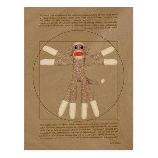 Het Briefkaart van de Aap van Vitruvian