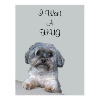 Het Briefkaart van de Hond van de omhelzing