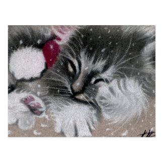 Het Briefkaart van de Kat van het Kat van de