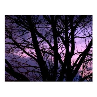 Het Briefkaart van de zonsondergang