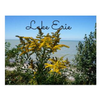 Het Briefkaart van Erie van het meer