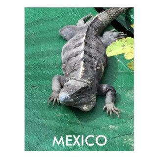 Het Briefkaart van Mexico