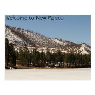 Het Briefkaart van New Mexico