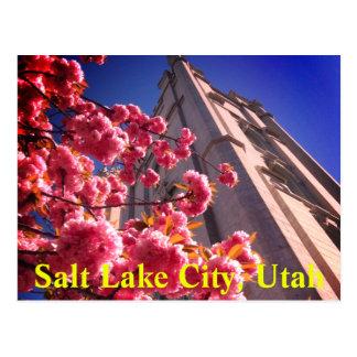 Het Briefkaart van Salt Lake City, Utah