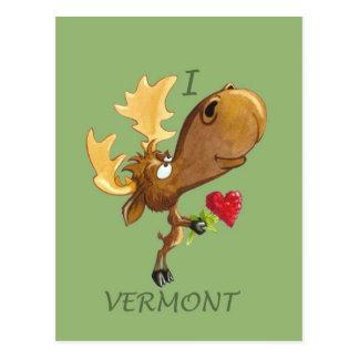 Het Briefkaart van Vermont van de Harten van Kirby