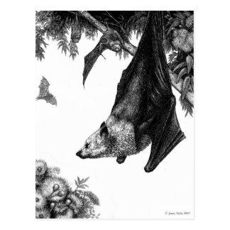 Het Briefkaart van vleerhonden