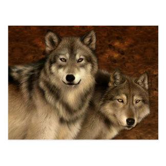 Het Briefkaart van wolven