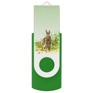 Het bruine Konijn van het Konijntje in de Groene USB Stick