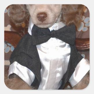 Het bruine Puppy van de Poedel in Kostuum Vierkant Stickers
