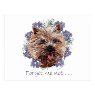 Het bruine Vergeet-mij-nietje van Terrier van de Briefkaart