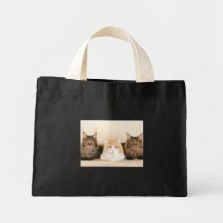 Het Canvas tas van de wasbeerkatten van Maine