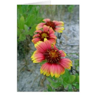 Het Canvas tas van Gaillardia van Wildflower Briefkaarten 0