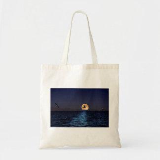 Het Canvas tas van het Zee van Salton