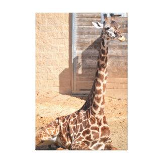 Het Canvas van de giraf