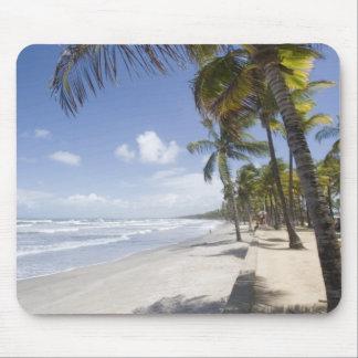 Het Caraïbische - Strand van Trinidad - Manzanilla Muismat