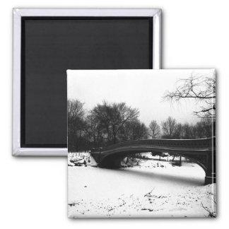 Het Central Park NYC van de Winter van de Brug van Magneet