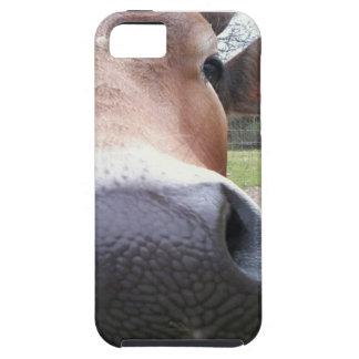 Het Close-up van de koe Tough iPhone 5 Hoesje