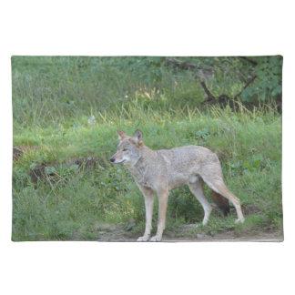 Het Collectie van de coyote Placemat