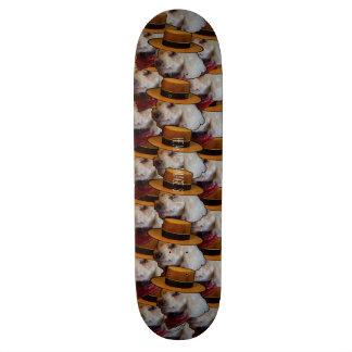Het Dek van de Studio's van de Schade van de Skateboard