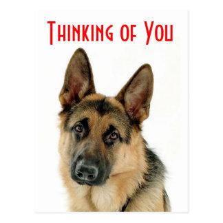 Het denken aan u het Briefkaart van de Hond van