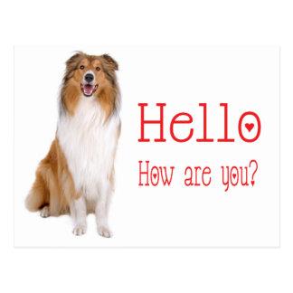 Het Denken van de Hond van het Puppy van de Collie Briefkaart