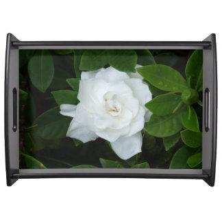 Het Dienende Dienblad van gardenia