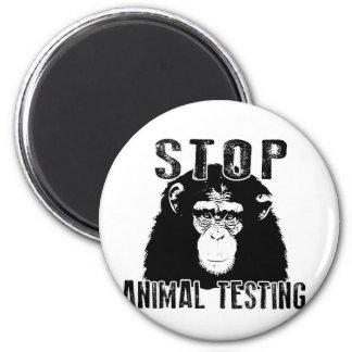 Het Dierlijke Testen van het einde - Chimpansee Magneet