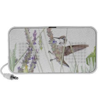 Het Dierlijke Wild van de Vogel van de kolibrie iPod Speakers