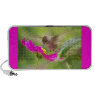 Het Dierlijke Wild van de Vogel van de kolibrie PC Speakers