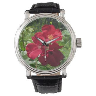 Het eenvoudige Rode horloge van Rozen wms