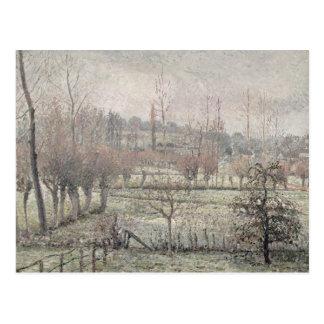 Het Effect van de sneeuw in Eragny, 1894 Briefkaart