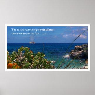 Het Eiland van de Behandeling van het zoute Water Poster
