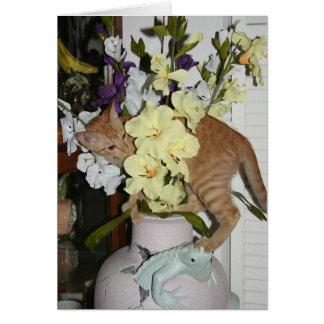 Het einde en ruikt de bloemen wenskaart