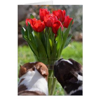 Het einde en ruikt de Tulpen Wenskaart